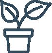 Ulbricht_Leistungen_Kübelbepflanzung